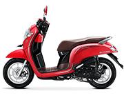 Harga Honda Scoopy Playful Langkat