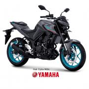 Harga Yamaha MT-25 Pasuruan